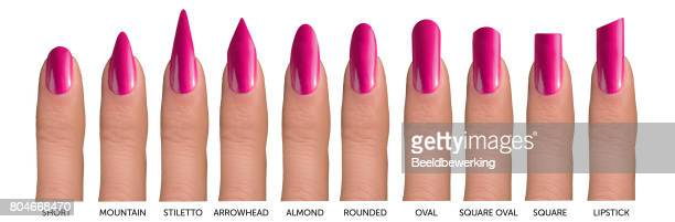 10 fingers with different nail shapes