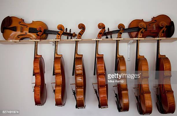 Finished volins and violas at violin and cello maker Rod Ward's studio in Guilden Morden Hertfordshire UK This highly skilled craft entales the...