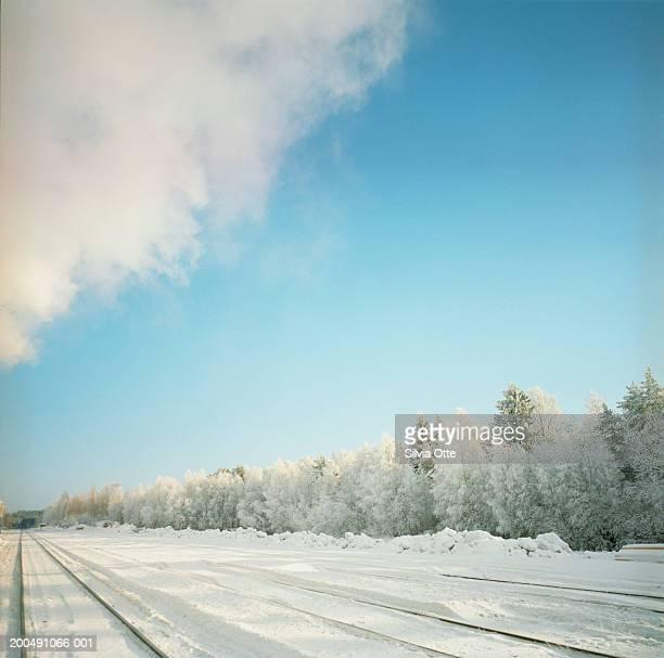 Finland, Helsinki, frozen train tracks beside snowy woodland