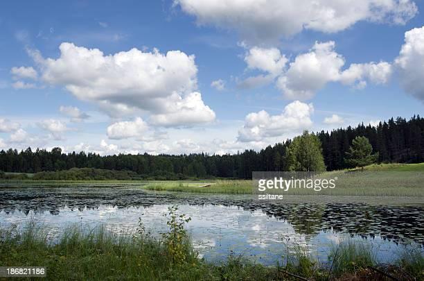 Finland Scandinavia summer lake