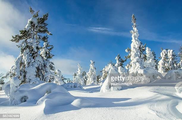Finland solitude