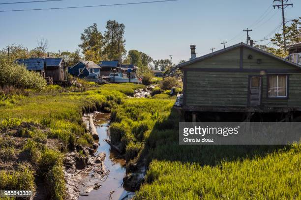finn slough - richmond british columbia stock photos and pictures