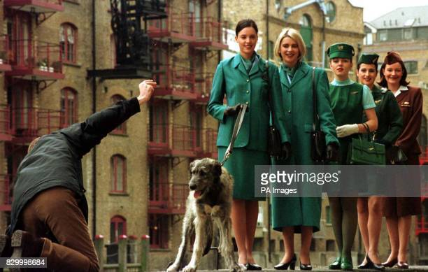 Finnegan the Irish Wolfhound puppy proves to be a problem for his trainer in London's Docklands today at the launch of the new Aer Lingus uniform in...