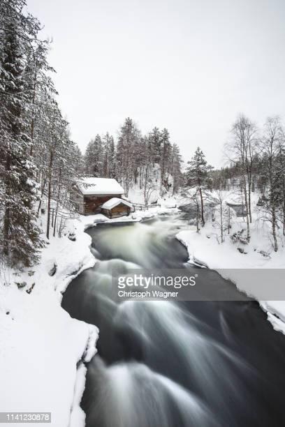 finnland - lappland - oulanka nationalpark - finlandia fotografías e imágenes de stock