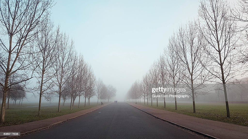 Finsbury Park in the fog, London : Stockfoto
