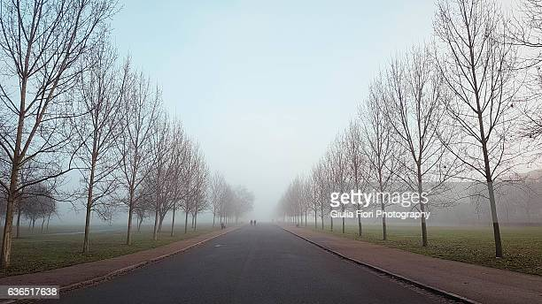 Finsbury Park in the fog, London
