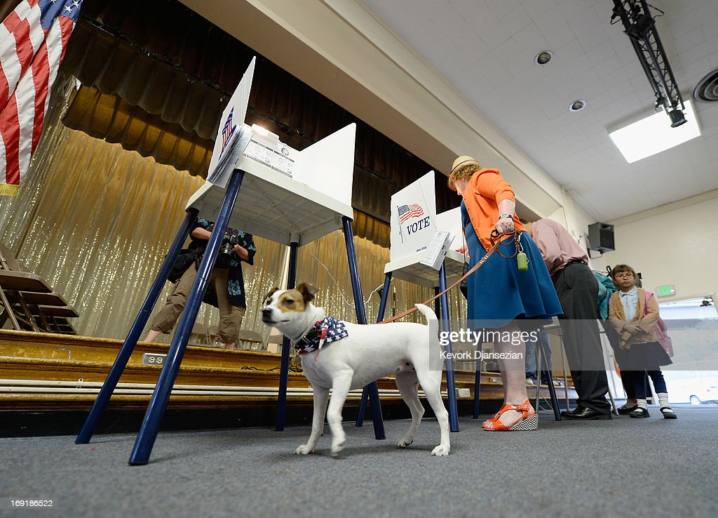 Fiona, a Jack Russell Terrier, waits for her owner Deborah Murphy (R) as she votes at Allesandro Elementary School on May 21, 2013 in the Silver Lake area of Los Angeles, California. In what could be a record-low voter turnout, Garcetti is up against Los Angeles City Controller Wendy Greuel for the seat held by two-term mayor Antonio Villaraigosa.