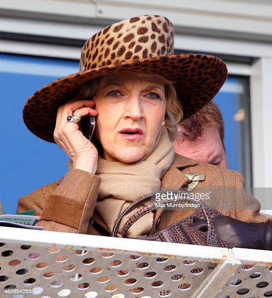 Fiona Shackleton watches the racing as she attends the Hennessy Gold Cup Race Day at Newbury Racecourse on November 30 2013 in Newbury England
