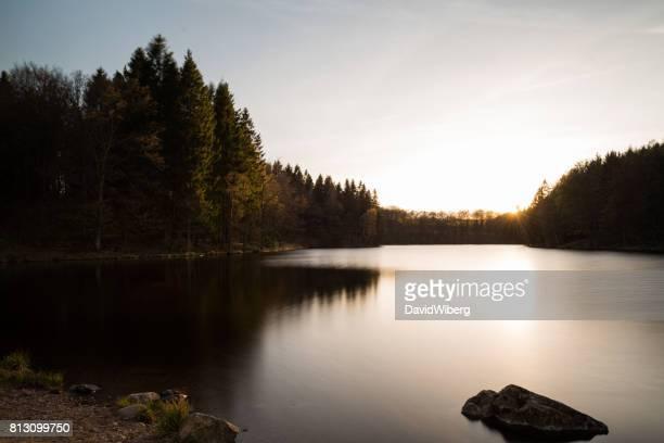 FIR Tree forest i magiska färgsprakande solnedgång över sjön (XXXLarge)
