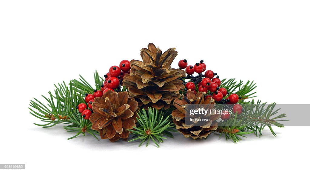 Fir Tree Pine Cone Decorative Red Berries Isolated