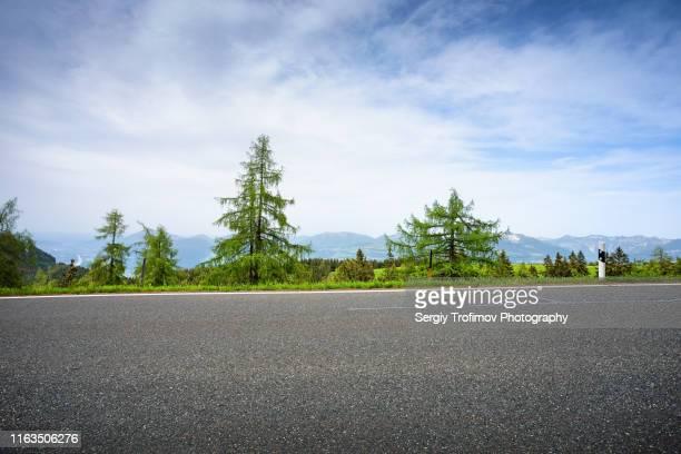 fir trees on roadside in summer day - vue latérale photos et images de collection