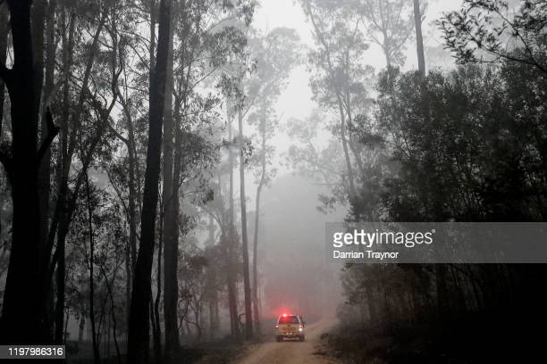 Fire and Rescue crew inspects burnt out forest on January 07 2020 surrounding Cann River Australia Milder weather conditions have provided some...