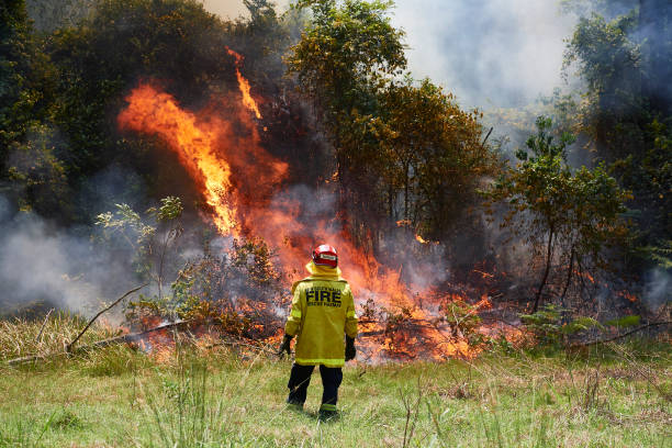 AUS: Firefighters Continue To Battle To Contain Bushfires Across NSW