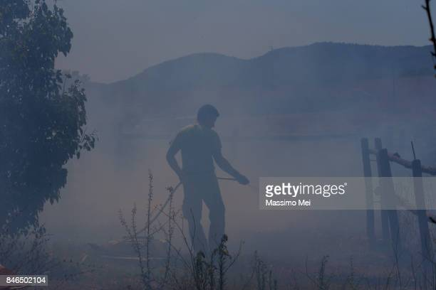 fire around bracciano lake - helicopter photos stock pictures, royalty-free photos & images