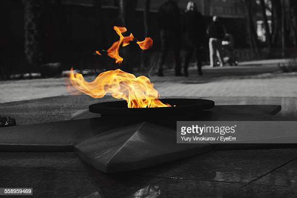 fire at war memorial - tomb of the unknown soldier stock photos and pictures