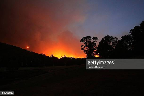 A fire blazes during the bushfires that swept through the region on February 9 2009 in Healesville Australia Victoria Police have revised the...