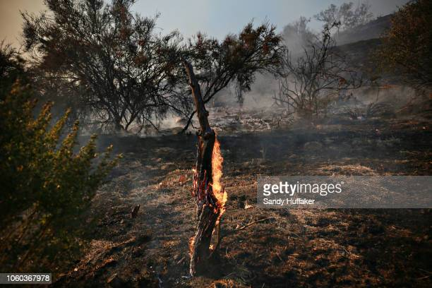 A fire burns at the Salvation Army Camp on November 10 2018 in Malibu California The Woolsey fire has burned over 70000 acres and has reached the...
