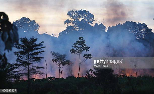 Fire burns in a deforested section along the Interoceanic Highway in the Amazon lowlands on November 16 2013 in Madre de Dios region Peru Fires often...