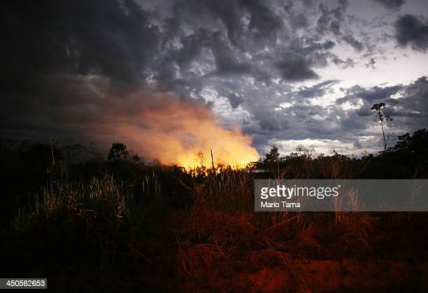 A fire burns in a deforested section along the Interoceanic Highway in the Amazon lowlands on November 16 2013 in Madre de Dios region Peru Fires...