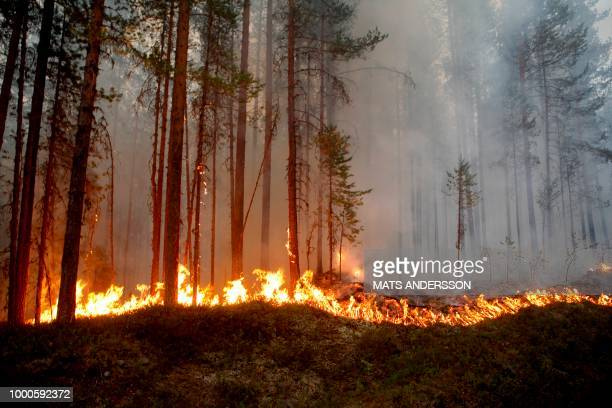Fire burns in Karbole Sweden on July 15 2018 Due to the dry weather 80 wildfires burned in Sweden / Sweden OUT