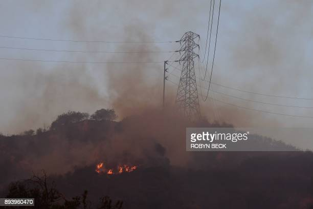 Fire burns near power lines at the Thomas Fire December 16 2017 in Montecito California / AFP PHOTO / Robyn Beck
