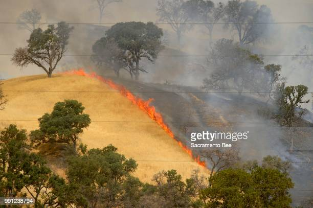 Fire consumes a hillside as the County fire burns along Highway 129 near Lake Berryessa in Yolo County, Calif., on Tuesday, July 3, 2018.