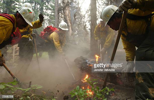 A fire crew from Medford Oregon mops up a burnout area on the eastern edge of the Robert Fire August 2 2003 in Glacier National Park Montana The fire...