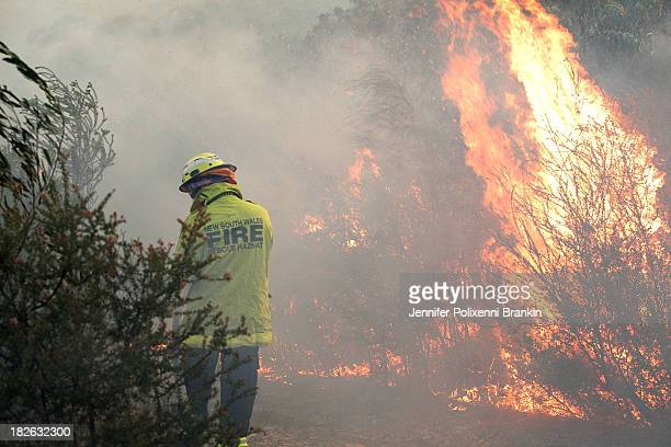 Fire crews tackle a forest fire in the suburb of Davidson on October 2 2013 in Sydney Australia The small bushfire was attended by 15 fire trucks as...