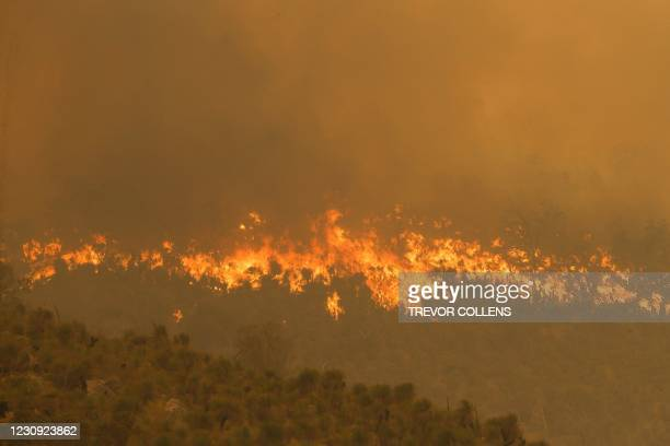 Fire driven by strong winds burns on a ridge in the suburb of Brigadoon in Perth on February 2 forcing emergency evacuations just days after the west...