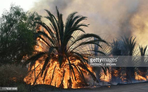 Fire engulfs trees close to one of many ranches near the Ronald Reagan Presidential Library in Simi Valley California during the Easy Fire on October...