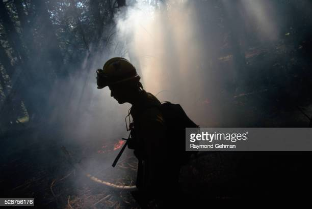 Fire Fighter at Forest Fire