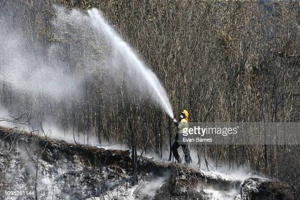 Fire Fighter in action as he fights the new fire in Walters Bluff Nelson as forest fires continue to burn across the Tasman District on February 8...