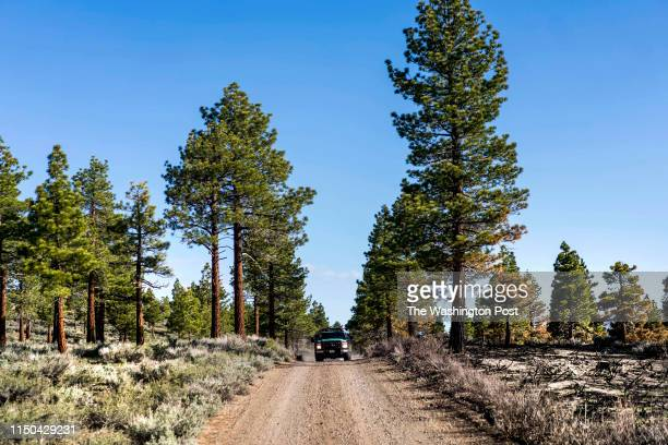 Fire fighters arrive for a controlled burn in the Inyo National Forest area of Mammoth Lakes in Mammoth Lakes California Monday June 3 2019 On the...