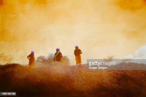 Fire fighters at a bush fire