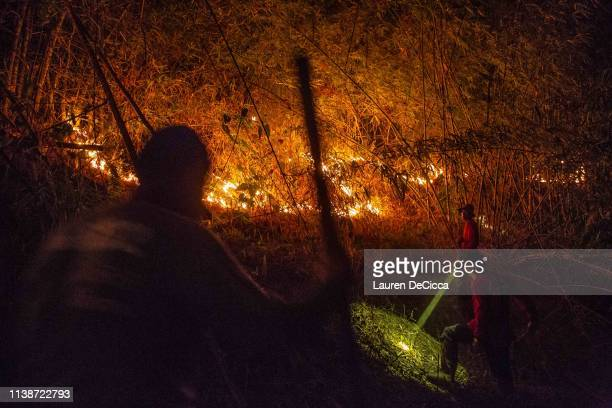 Fire Fighters from Doi Mae Salong Station put out a forest fire on the Thailand/Myanmar border on April 19 2019 in Chiang Rai Thailand Thailand's...