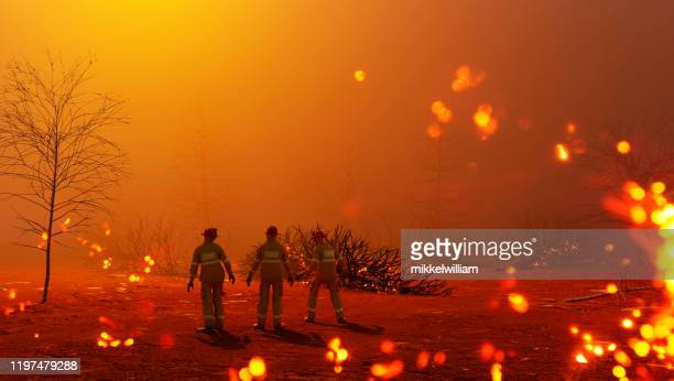 fire fighters gets ready to work in the middle of a burning forest - environmental damage stock pictures, royalty-free photos & images