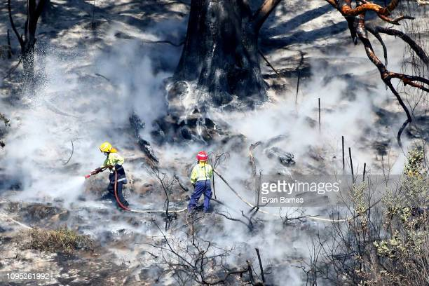 Fire Fighters in action as they fight the new fire in Walters Bluff Nelson as forest fires continue to burn across the Tasman District on February 8...