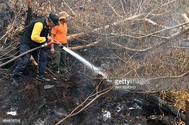 Fire fighters try to put out fires in forest and peatlands surrounding Palangkaraya city in Central Kalimantan on October 30 2015 Desperate civilians...
