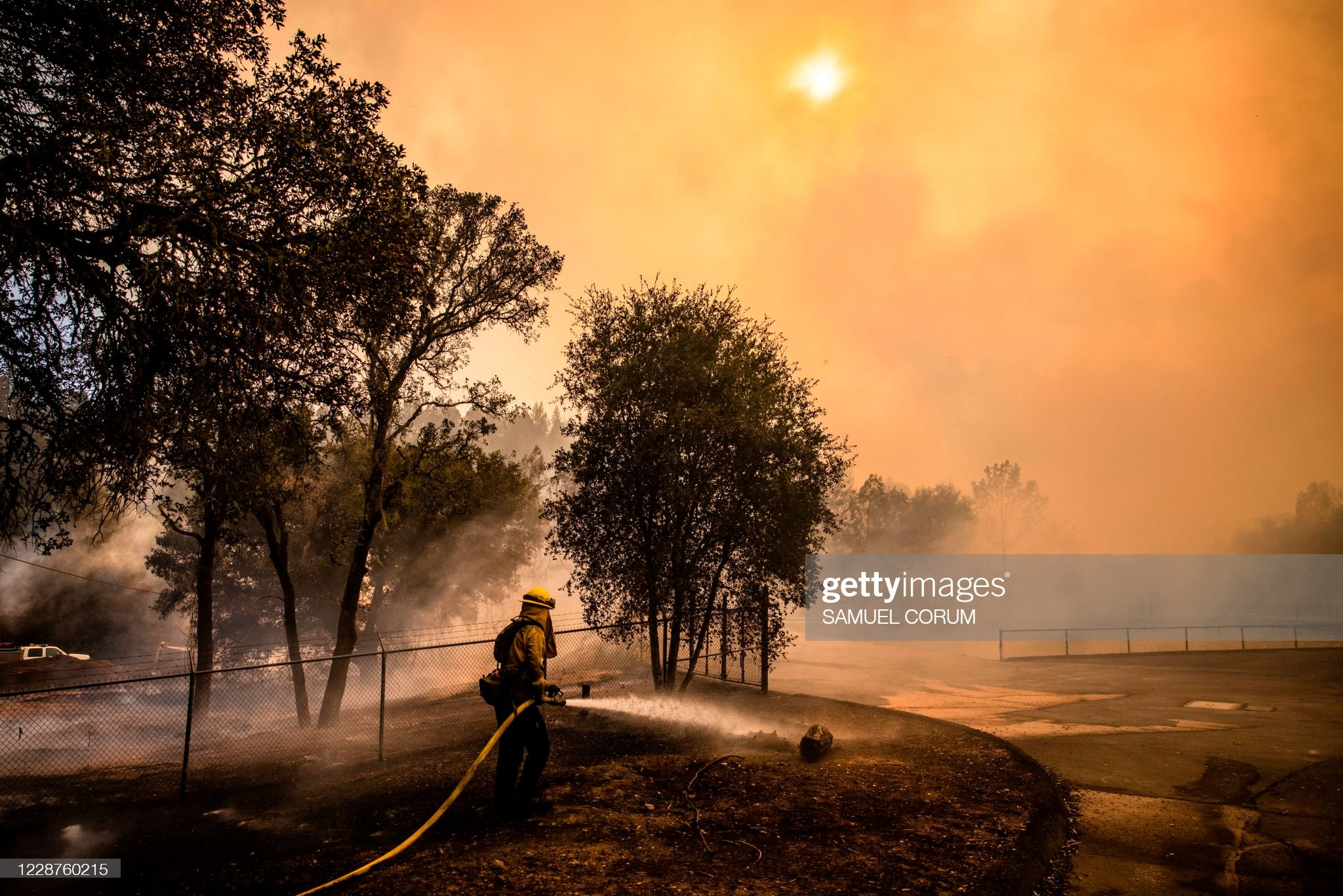Climate Action -- fire fighter dousing forest fire