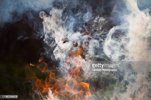 fire flames and smoke - barbecue grill stock pictures, royalty-free photos & images