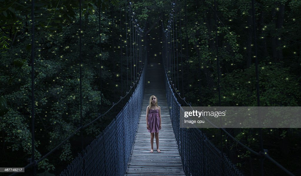 Fire Flies : Foto stock