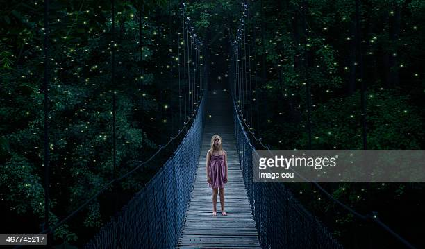 fire flies - fireflies stock pictures, royalty-free photos & images