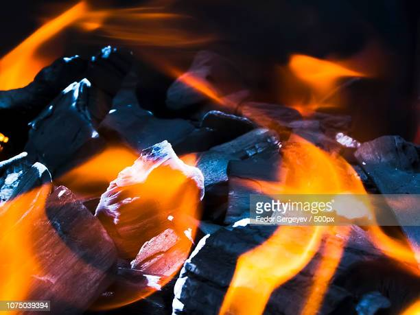 fire for bbq - fedor stock pictures, royalty-free photos & images