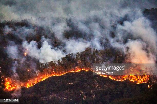 fire front, wall of fire, line of fire, forest fire, bushfire in the valley, blue mountains, australia - heat haze stock pictures, royalty-free photos & images