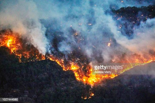 fire front, wall of fire, line of fire, forest fire, bushfire in the valley, blue mountains, australia - australia stock pictures, royalty-free photos & images