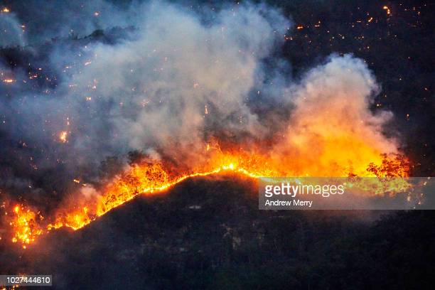 fire front, wall of fire, line of fire, forest fire, bushfire in the valley, blue mountains, australia - nsw bushfires stock photos and pictures