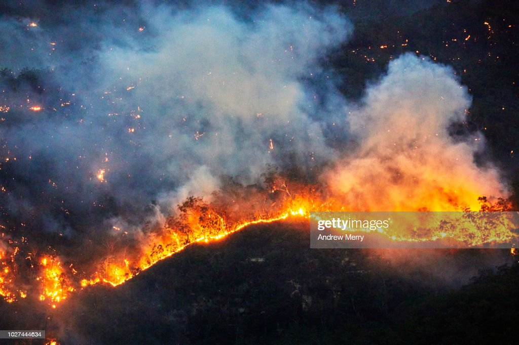 Fire front, wall of fire, line of fire, forest fire, bushfire in the valley, Blue Mountains, Australia : Stock Photo