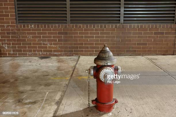 fire hydrant in new york city at night with overhead lighting. - fire hydrant stock pictures, royalty-free photos & images