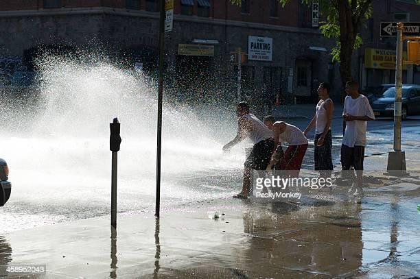 消火栓ニューヨークシティの夏の日