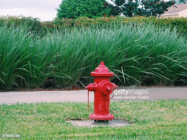Fire Hydrant On Countryside Landscape